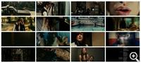Последние каникулы 2 (2009)