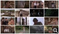 Одинокий голубь (1989)