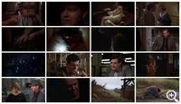 Почтальон всегда звонит дважды (1981)