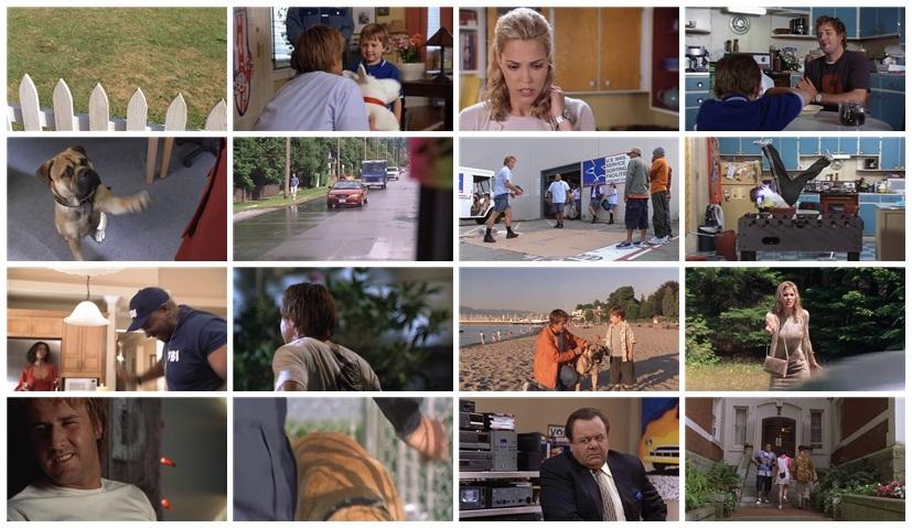 See Spot Run 2001  IMDb